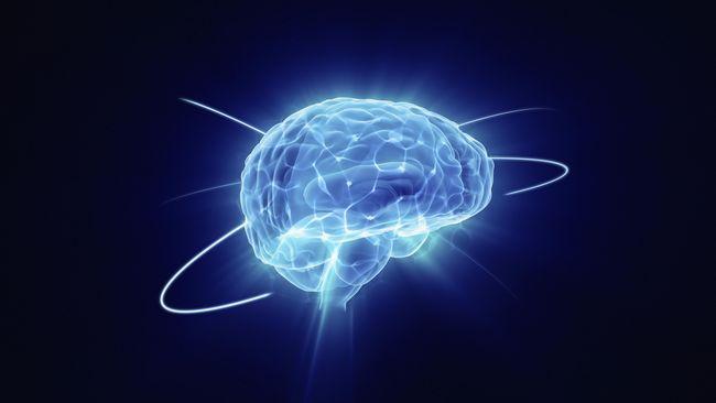 Delapan Trik Sehari-hari untuk Otak Perkasa