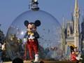 Kuping Mickey Mouse 'Terdampar' di Saco River