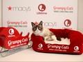 Grumpy Cat dkk Mejeng di Museum New York