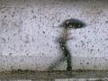 Ingin Tidur Terus Saat Musim Hujan? Simak Fakta Ilmiahnya