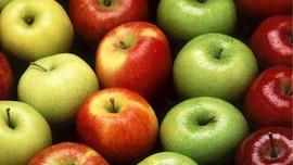 Rekomendasi Makanan untuk Menjaga Kesehatan Paru-paru