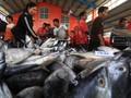 Menteri Susi: Harga Ikan Laut Lebih Murah Sejak Moratorium