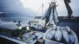Diancam Eropa, Thailand Coba Berantas <i>Illegal Fishing</i>