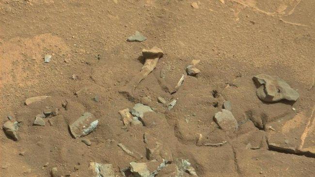 Persiapan NASA Bangun Koloni Manusia di Mars