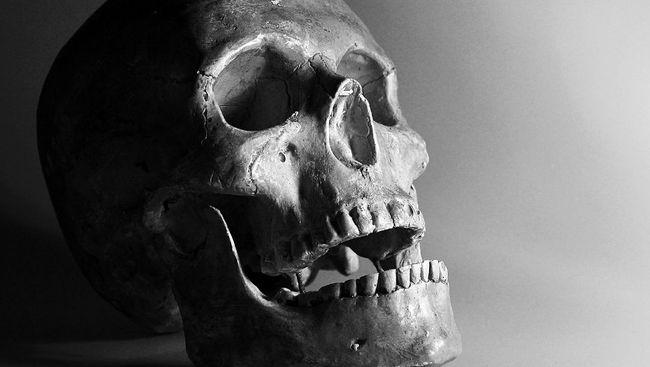 Barak dan Kerangka Berusia 2.000 Tahun Ditemukan di Roma