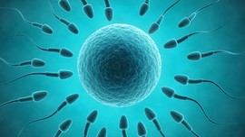 Ahli: Masker dari Sperma Bikin Wajah Bercahaya