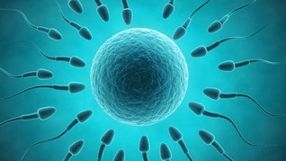 Pola Makan Buruk Tekan Jumlah Sperma