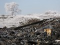 Rusia Bantah Hasil Laporan Jatuhnya Pesawat MH17