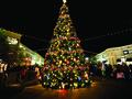 MUI: Fatwa soal Natal Tak Spesifik Larang Ucapan Selamat