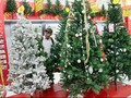 MUI: Selamat Natal Boleh Diucapkan Muslim