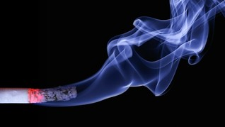 Studi: Mencium Sisa Bau Rokok Berbahaya untuk Tubuh