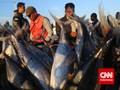 Luhut: Nelayan dan Pengusaha Sepakat Lawan Ilegal Fishing