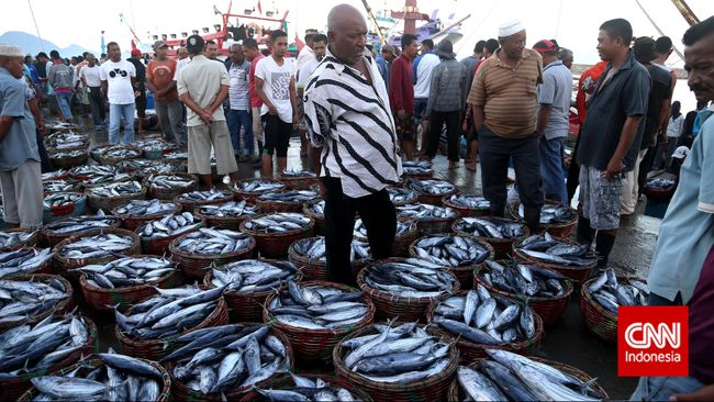 Neraca Perdagangan Ikan Indonesia Surplus US$232 Juta