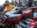 Nelayan Akui Ada Penyelundupan Ikan ke Luar Negeri