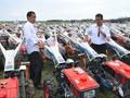 Keputusan Impor Beras Ada di Tangan Jokowi