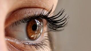 Bulu Mata 12,4 cm yang Pecahkan Rekor Dunia