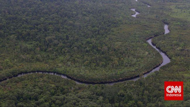 Presiden Jokowi Perpanjang Moratorium Hutan