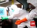 55 dari 70 Jenazah Korban AirAsia Sudah Diidentifikasi