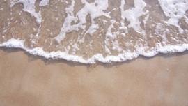 Baru Ada Sembilan Alat Peringatan Tsunami di Bali