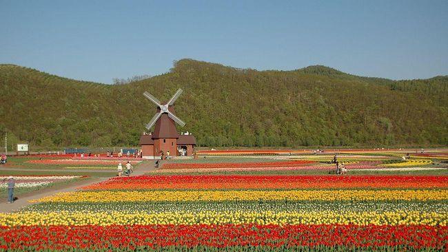 Belanda Terpilih Sebagai Destinasi Paling Berwarna