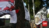 Pak Bolin 66 tahun, simpatisan PDIP turut memeriahkanpesta rakyat dalam peringatan HUT PDI-P ke-42 di Jakarta, Sabtu (10/1). (CNN Indonesia/Adhi Wicaksono)