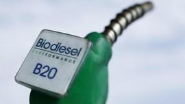 Uni Eropa Batal Banding Penghapusan Bea Masuk Biodiesel RI