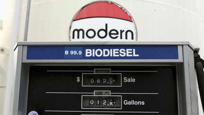 Pemerintah Bakal Bujuk China Tiru Program Biodiesel RI