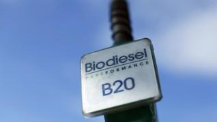 Produsen Biodiesel Punya Waktu Dua Pekan Verifikasi Denda