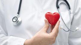 Kolesterol Baik di Tubuh Justru Perlu Ditingkatkan