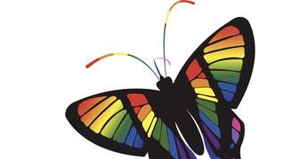 BKKBN Sebut LGBT Musuh Pembangunan