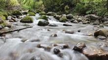 KLHK Cek Pencemaran Sungai oleh Pabrik Anak Usaha Sinar Mas