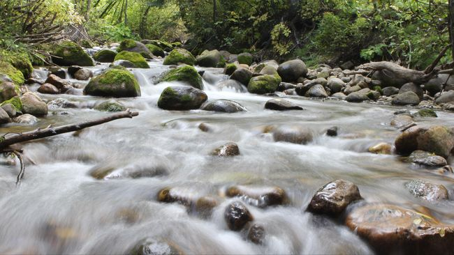 Sungai Gulamo, 'Green Canyon' Kebanggaan Riau