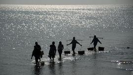 Hitam Putih Nasib Nelayan di Bawah Kendali Susi