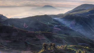 Banjarnegara Targetkan 150 Ribu Orang ke Dieng saat Lebaran