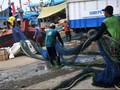 Nelayan Klaim Jokowi Bolehkan Cantrang