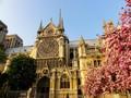 Notre Dame, Permata Peradaban yang Dilalap Kebakaran