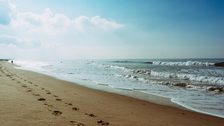 Jalur 'Cantik' Baru Hubungkan Pantai Bondi-Manly Australia