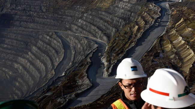 Pemerintah Larang Ekspor Bijih Mineral Mulai Esok Hari