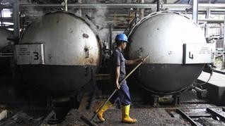 Harga Biodiesel Awal Tahun Terseret Anjloknya Harga CPO