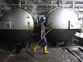 Indonesia Menang Gugatan Banding Uni Eropa untuk Biodiesel