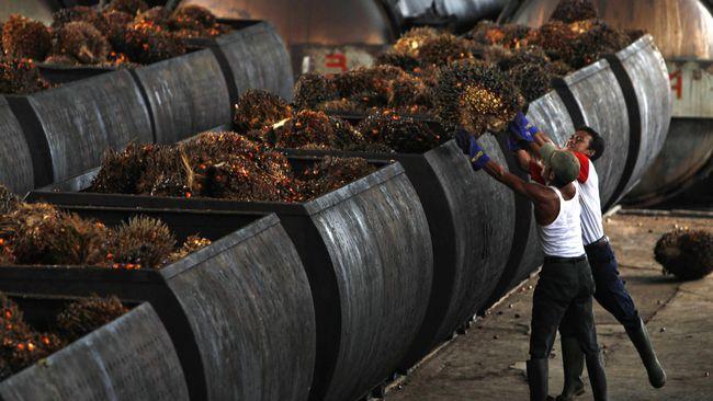 Usai Penghapusan Bea Masuk, GAPKI Mulai Ekspor Biodiesel