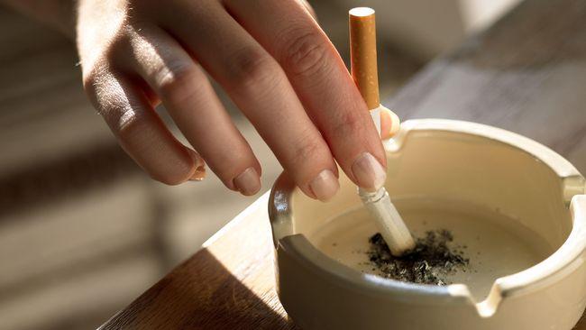 Austria Akan Tetapkan Larangan Merokok di Kafe dan Restoran