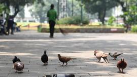 Menjaga Renjana Musisi di Taman Kota