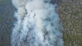 Pascablusukan Jokowi, Satgas Kebakaran Hutan Dibentuk