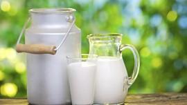 Hati-hati, Susu Terkontaminasi Pestisida