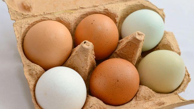 Telur 1000 Tahun dan Telur Asin Bahaya untuk Ibu Hamil