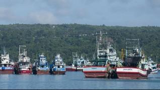 Sebanyak 3500 Kapal Ikan Mangkrak, Instruksi Jokowi Tak Jalan