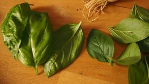 Pilihan 'Obat' Herbal untuk Atasi Diabetes Hingga Hipertensi