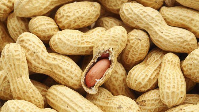 Akrabkan Anak dengan Susu dan Kacang untuk Cegah Alergi