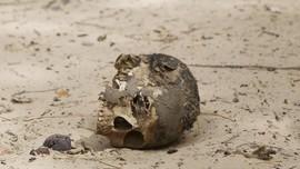 Boko Haram Eksekusi 12 Warga Nigeria